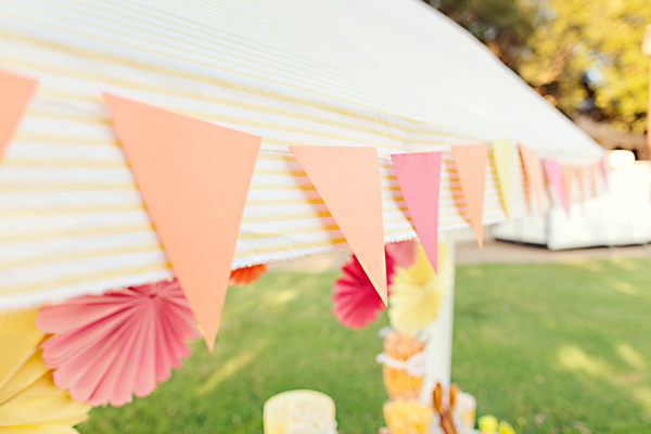 Southern-weddings-Southern-wedding-ideas-wedding-bunting